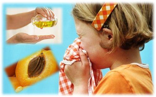 В период осенних дождей или февральских метелей нос – наиболее уязвимое место. Бывает, проснешься утром, а нос заложен. Можно бороться с этим дни напролет, а нос все равно не дышит. В таких случаях рекомендуют капать в нос абрикосовое масло с добавлением витамина А. Подобное применение заставит нос снова дышать и радовать вас ощущением всевозможных ароматов. К тому же масло избавит нос от сухости и жжения. Такой метод лечения насморка также безопасен и для детей.