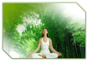 Бамбук издавна считался символом силы, энергии, счастья и здоровья, ибо его особенностями являются удивительная жизнестойкость и приспособляемость к не очень благоприятным внешним условиям