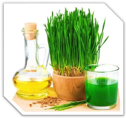 Гидролизованный белок пшеницы- вещество, «связывающее» естественную влагу, разглаживает кожу, снимает ощущение сухости и стянутости. Аминокислота. Белый кристаллический порошок без запаха