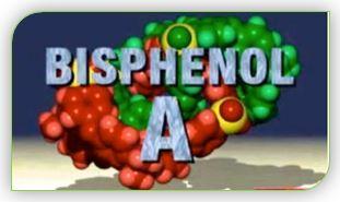 Бисфенол является причиной ряда онкологических заболеваний