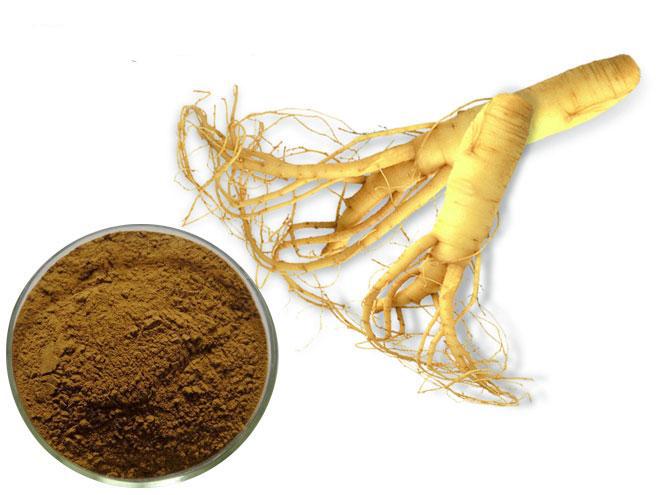 Экстракт женьшеня представляет собой лекарственное средство, основным компонентом которого является целебный корень такого растения как женьшень. Данное средство является биологически чистым, так как оно содержит в себе только биологические компоненты растительного происхождения