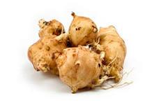 Инулин – это углевод, который является энергетическим запасом растения. Место его «дислокации» — корни и клубни некоторых видов растений