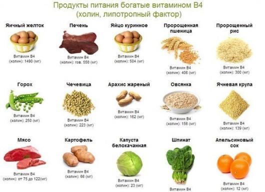 Продукты содержащие витамин В4