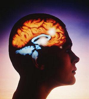 Витамин В3 часто называют витамин спокойствия