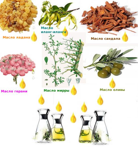 Эфирные масла в составе КРЕМА С МУМИЕ от Мирра выполняют роль стимулирующего и регенерирующего характера