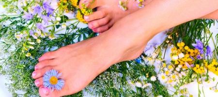 Противовоспалительный эффект достигается за счет растительных компонентов продукта: травы мелиссы, экстрактами листьев и почек березы, коры ивы, эфирных масел мирры и розмарина