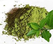Зеленый чай, экстракт